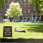 London - Grass
